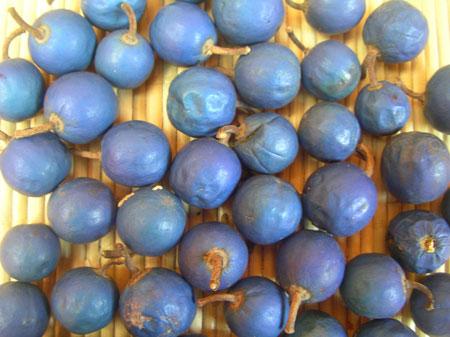 Ganitri Fruits