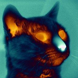 infrared-cat2.jpg