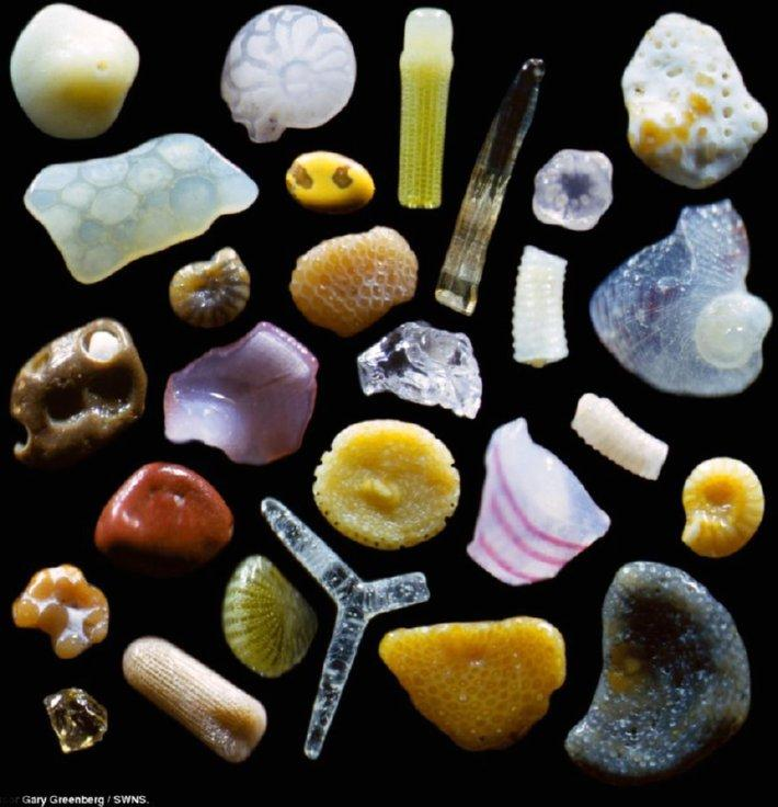grains of sand magnified