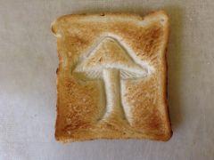 Mushroom On toast.