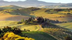 tuscan summer autumn beautiful cypress farms fields green hills italy mountains nature pasture summer