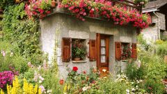 Cottage garden house