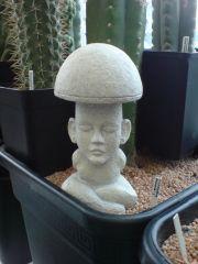 Mayan Mushroom Stone