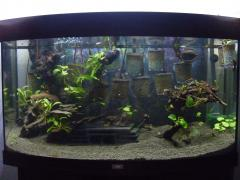 New scape for now but must remove deathtrap cave